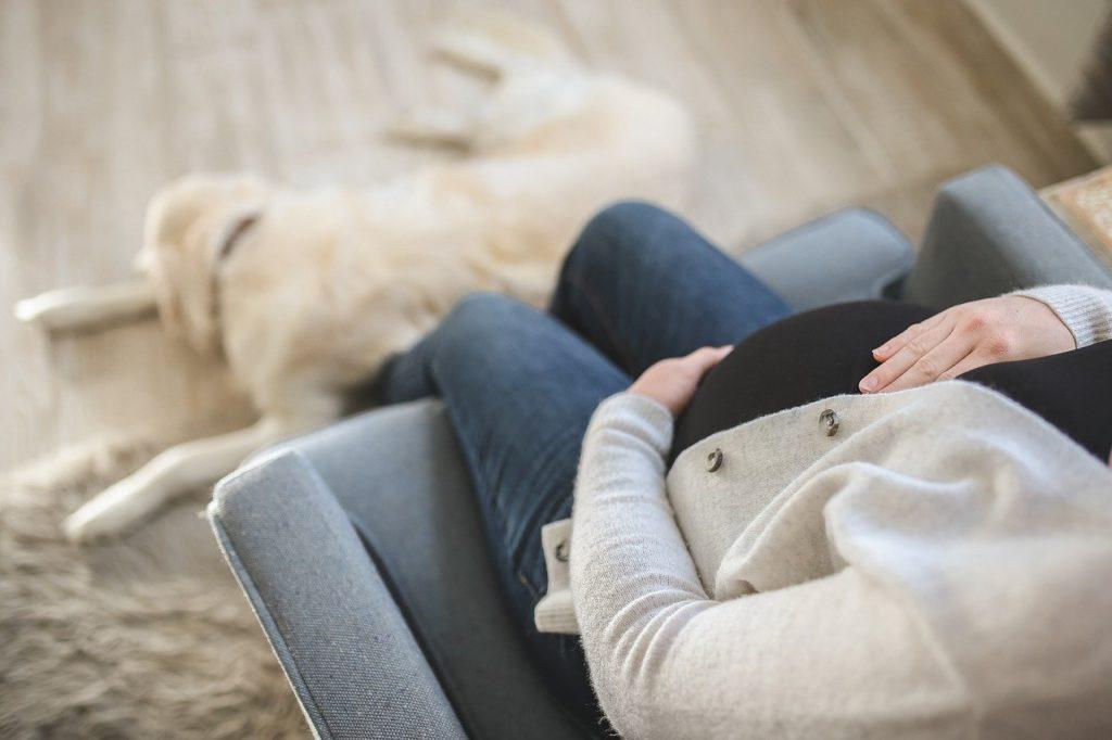 13 בדיקות שכדאי לעשות לפני ותוך כדי היריון